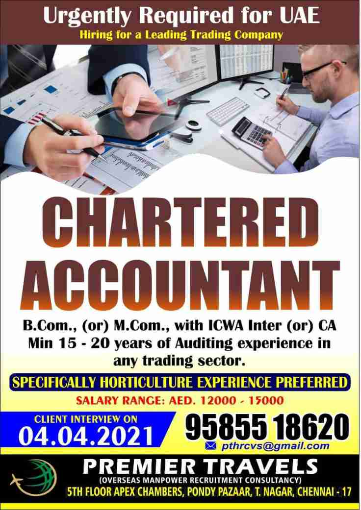 Charted Accountant jobs